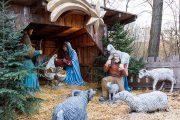 Weihnachten 2015 im Lainzer Tiergarten: Das Naturparadies öffnet vom 24.12.2015 bis 06.01.2016 seine Tore