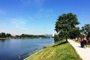 """Die """"Strombucht""""- neue Liegewiese an der Strombucht an der Alten Donau"""